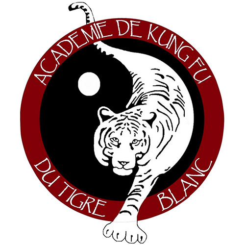 Logo Académie de Kung-fu